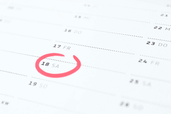 luisamor_calendario
